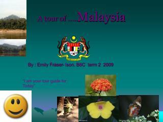 A tour of ….. Malaysia