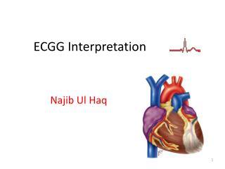 ECGG Interpretation