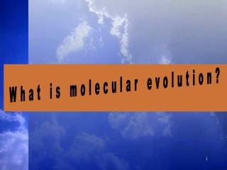 What is molecular evolution?