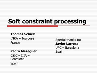 Soft constraint processing