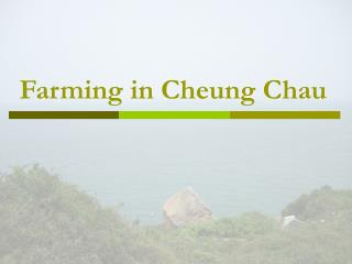 Farming in Cheung Chau