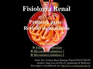 Fisiologia Renal Primeira parte: Revisão da anatomia