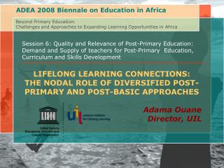 ADEA 2008 Biennale on Education in Africa Beyond Primary Education: