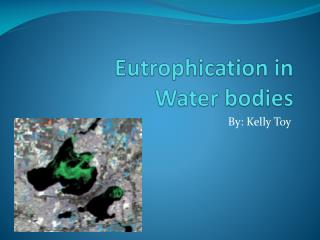 Eutrophication in  Water bodies