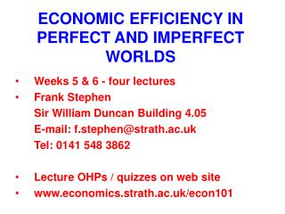 ECONOMIC EFFICIENCY IN PERFECT AND IMPERFECT WORLDS