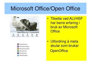 Microsoft Office/Open Office