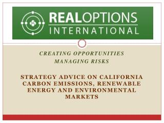 Creating Opportunities Managing Risks