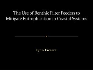 The Use of Benthic  Filter  Feeders to Mitigate Eutrophication in Coastal Systems