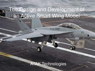 The Design and Development of an Active Smart Wing Model