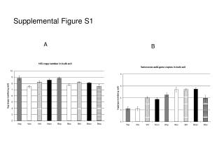 Supplemental Figure S1