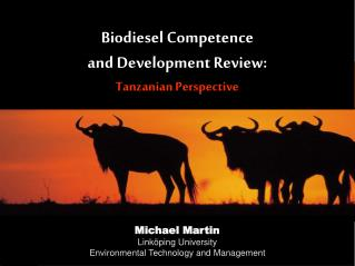Biodiesel Competence  and Development Review: Tanzanian Perspective