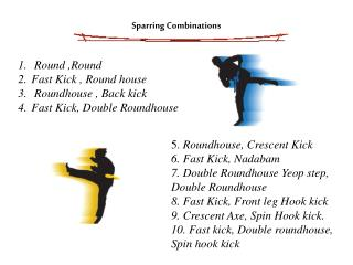 Sparring Combinations