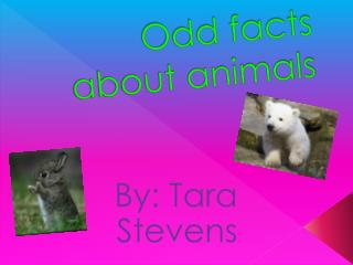 Odd facts about animals