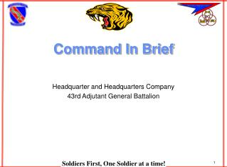 Command In Brief