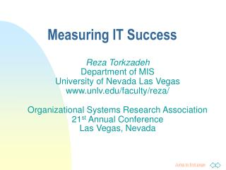 Measuring IT Success