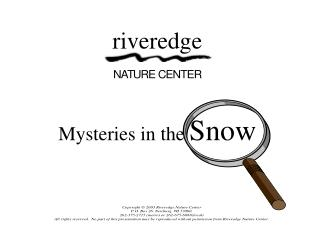 Mysteries in the  Snow
