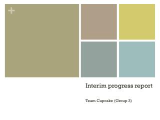 Interim progress report