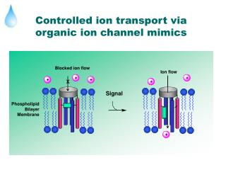 Controlled ion transport via organic ion channel mimics
