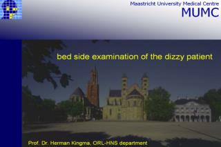 bed side examination of the dizzy patient Herman Kingma, ORL-HNS department