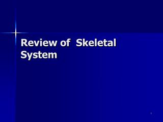 Review of  Skeletal System