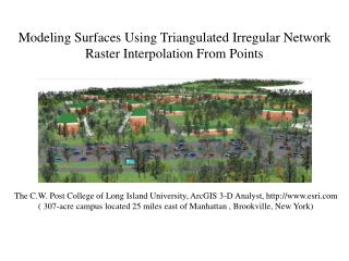Modeling Surfaces Using Triangulated Irregular Network  Raster Interpolation From Points