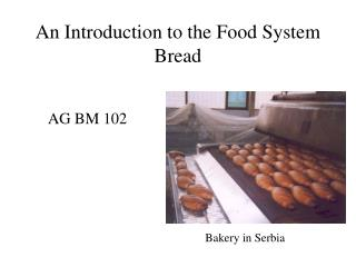 An Introduction to the Food System Bread