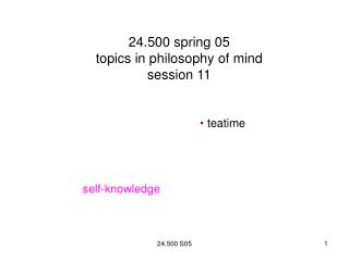 24.500 spring 05 topics in philosophy of mind  session 11