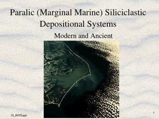 Paralic (Marginal Marine) Siliciclastic Depositional Systems
