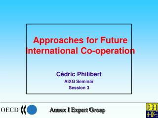 Approaches for Future International Co-operation
