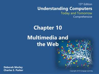 Chapter  10 Multimedia and the Web