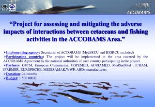 Project endorsed by the ACCOBAMS Parties in November 2004