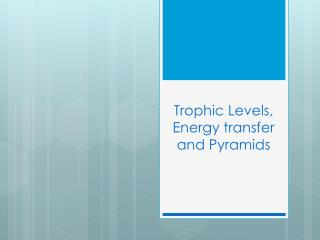 Trophic  Levels, Energy transfer and Pyramids
