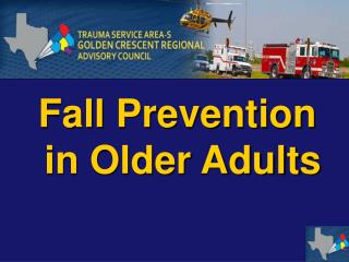 Fall Prevention  in Older Adults