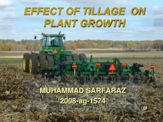 EFFECT OF TILLAGE  ON PLANT GROWTH