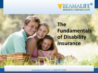 The Fundamentals of Disability Insurance