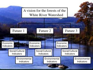 A vision for the forests of the White River Watershed