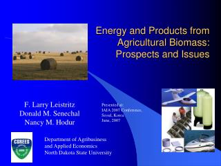 Energy and Products from Agricultural Biomass: Prospects and Issues