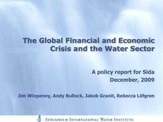 The Global Financial and Economic Crisis and the Water Sector
