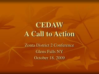 CEDAW A Call to Action