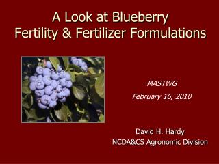 A Look at Blueberry  Fertility & Fertilizer Formulations