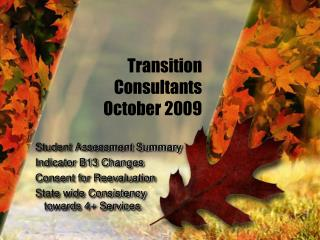 Transition Consultants October 2009
