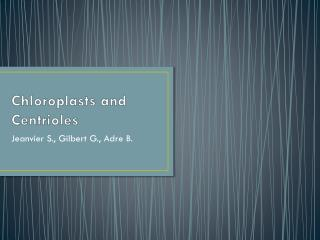 Chloroplasts and Centrioles