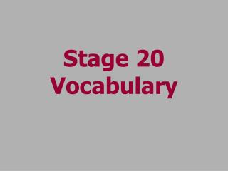 Stage 20 Vocabulary