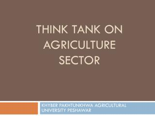 THINK TANK ON AGRICULTURE SECTOR