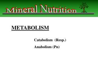 Catabolism (Resp.) Anabolism (Pn)