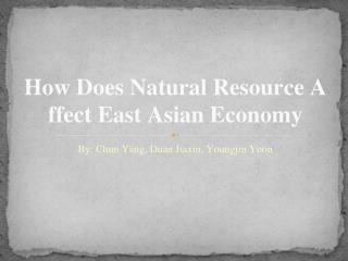 How Does Natural Resource Affect East Asian Economy