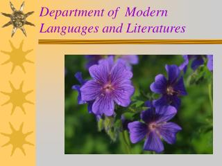 Department of  Modern Languages and Literatures