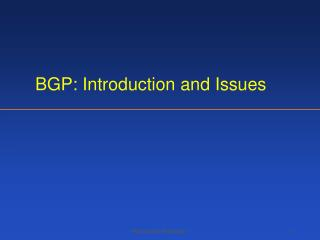 BGP: Introduction and Issues