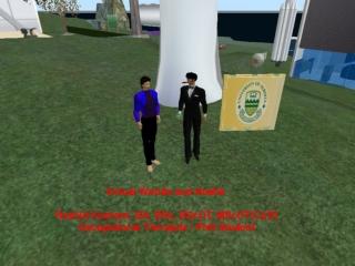 Virtual Worlds and Health Rashid Kashani, BA, BSc, BScOT, MScOT(C)(R)