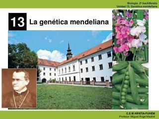 La genética mendeliana